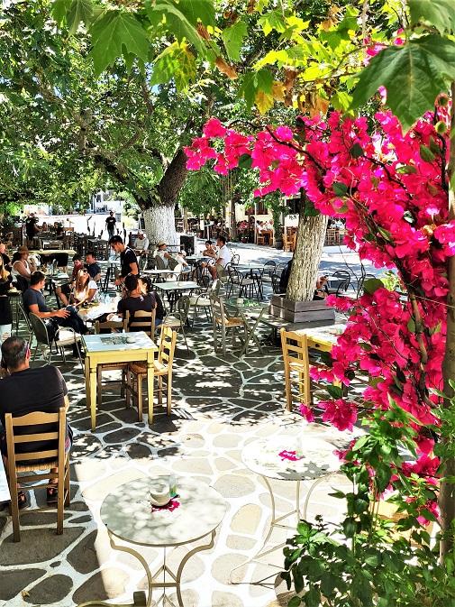 Platanos kafe u selu Filoti