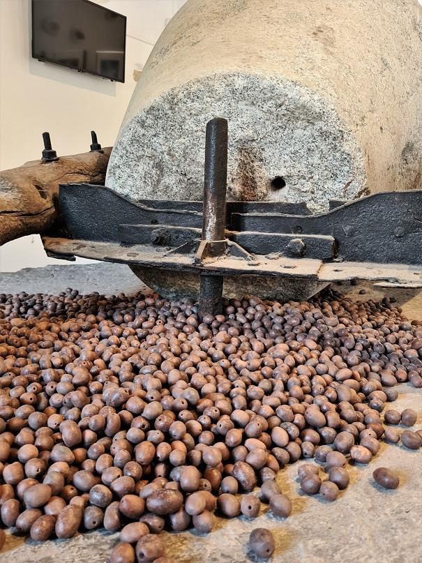 Egares presa za masline